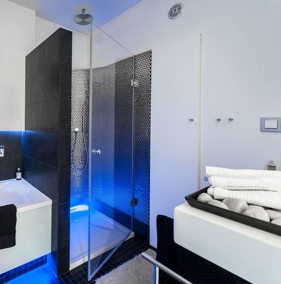 Стеклянные перегородки в ванных комнатах